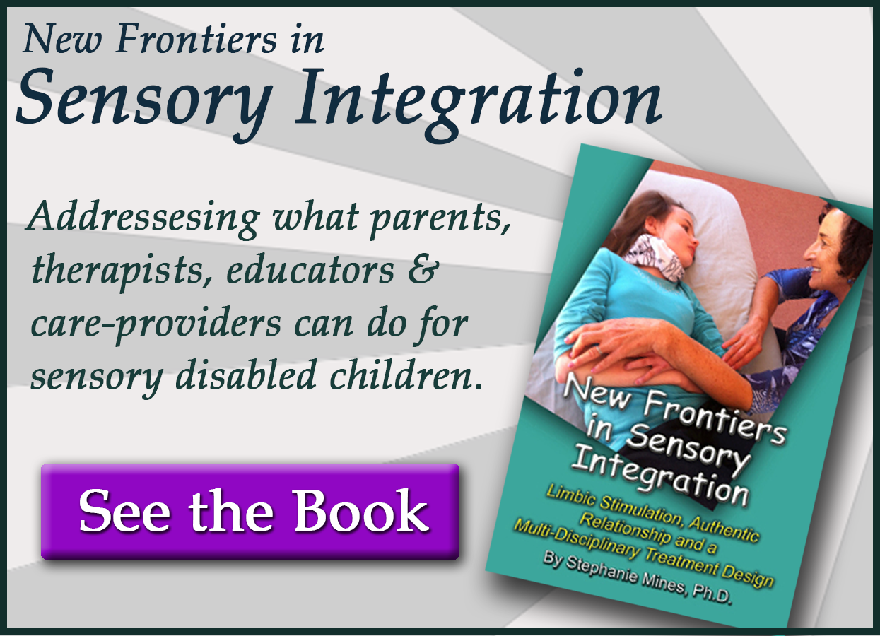 book on sensory integration